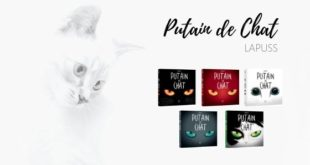 Putain de Chat Lapuss