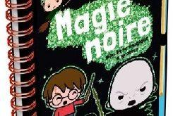 harry-potter-magie-noire-livre-a-gratter-404