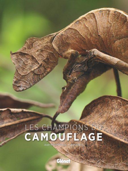 Les Champions du camouflage