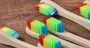 Brosse a dents en Bambou