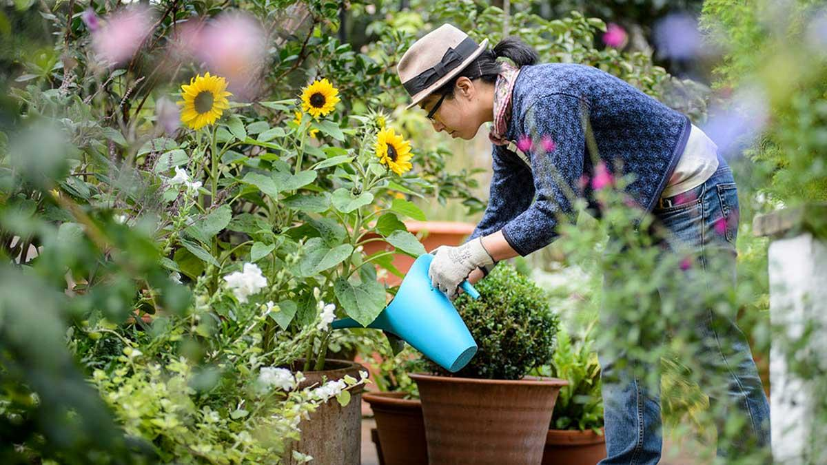 bien jardiner