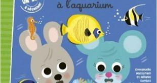timote-a-l-aquarium-grund