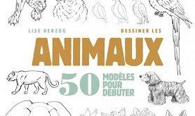 cahiers-dessinateur-dessiner-animaux-mango