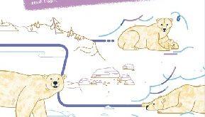 suis-du-doigt-ours-polaire-cabane-bleue