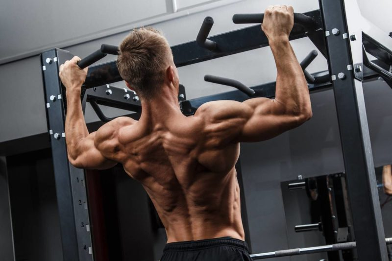 exercices pour bien travailler ses muscles dorsaux
