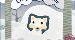 cinq-petits-renards-glenat-quatre-fleuves