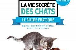 la-vie-secrete-des-chats-guide-pratique-larousse