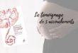Pourquoi j'ai mangé mon placenta, de Jeanne Goujon
