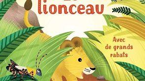 mon-petit-livre-rabats-le-lionceau-usborne